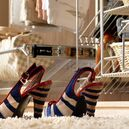 Pull out shoe rack storage